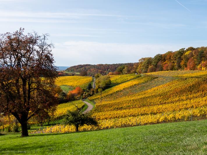 Herbst-Wanderung